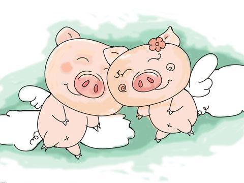 2019属猪备孕月份表_2019年生猪几月份怀孕_2019年属图片