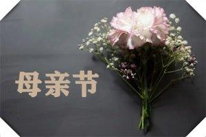 2020年母亲节送什么花最合适,康乃馨、玫瑰